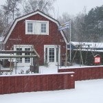 Hogeweide in sneeuw