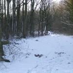 Sneeuw en zon 2
