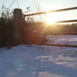 Sneeuw en zon 3